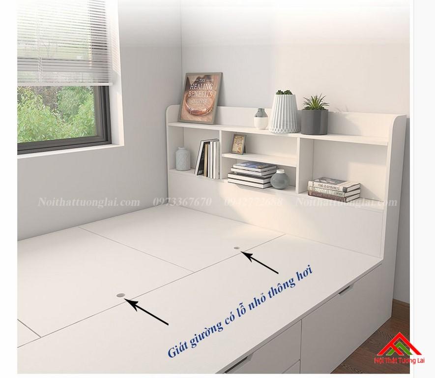 Giường trẻ em kết hợp tủ quần áo vô cùng tiện lợi GB6813 8