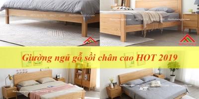 Top giường ngủ chân cao gỗ sồi HOT nhất 2019